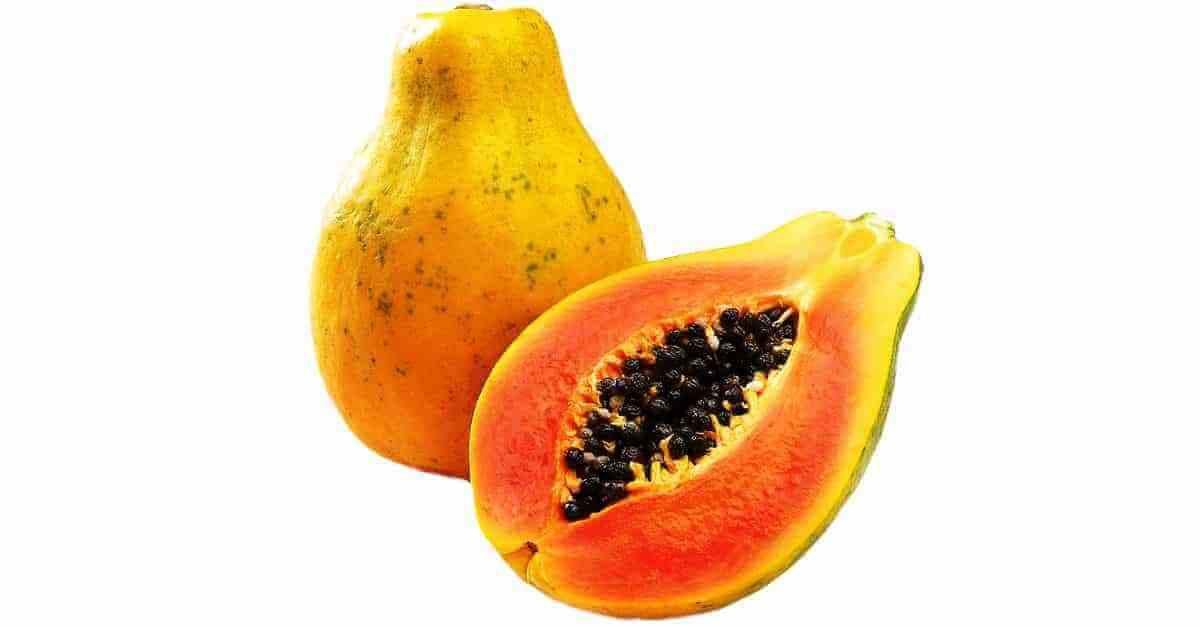 Mamão frutas