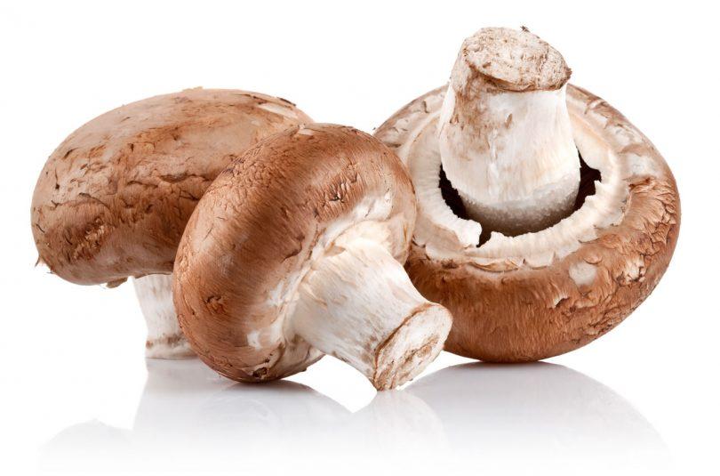 cogumelo venenoso sintomas de diabetes