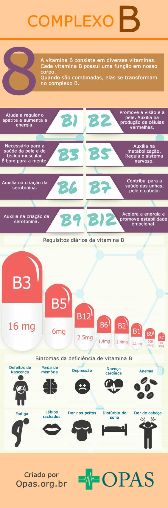 Infográfico complexo B
