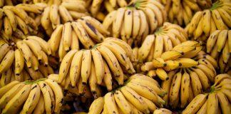 A banana e seus benefícios