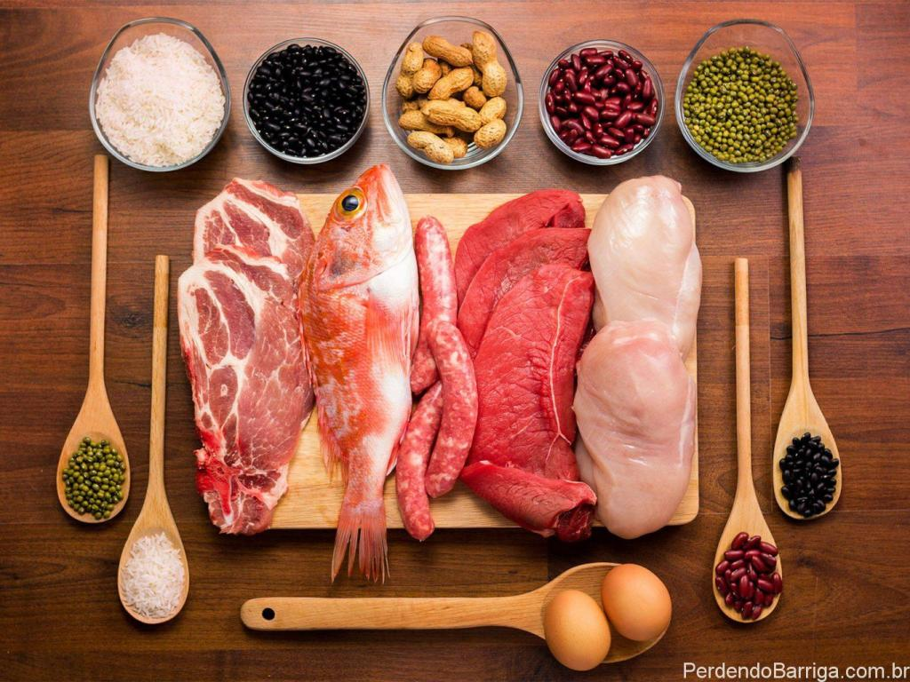 Alimentos que contém proteína