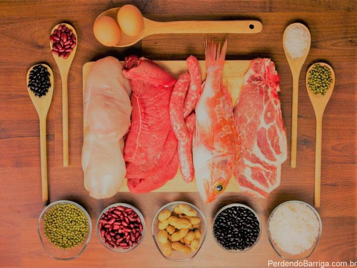 Alimentos que contém proteínas